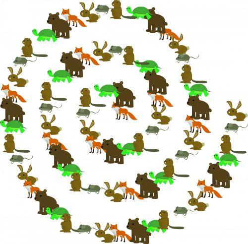 Animal Spiral