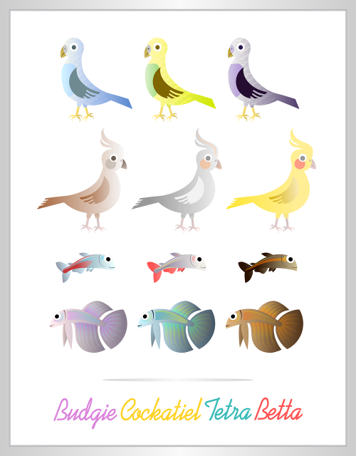 animals birds fishes