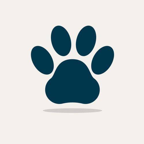 animals dog paw