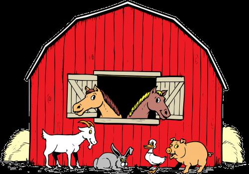 animals barn duck