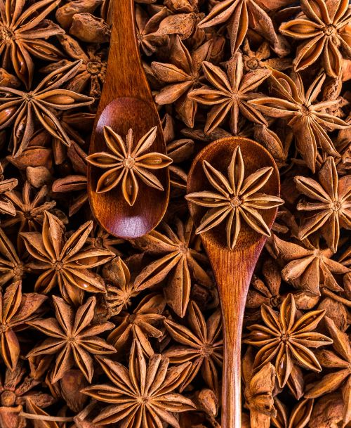 anise spices seeds