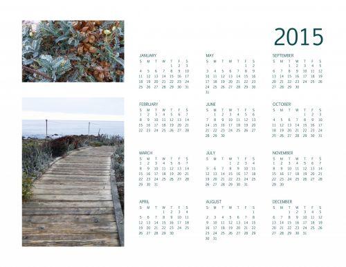 Annual 2015 Calendar