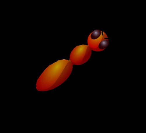 ant eyes brown