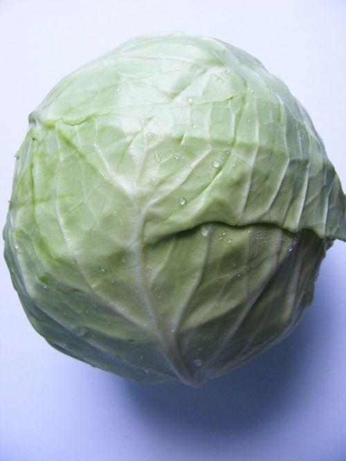 anticancer antioxidant cabbage