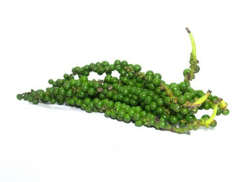 antioxidant aromatic bell pepper