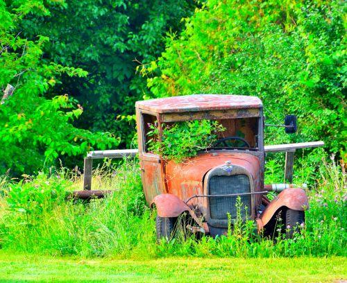 antique car final rest abandoned