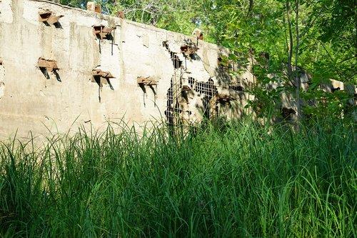 antiquity  nature  construction