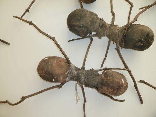 ants wooden ants ant art