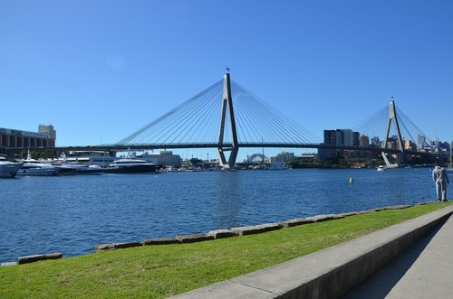 anzac bridge  bridge  water