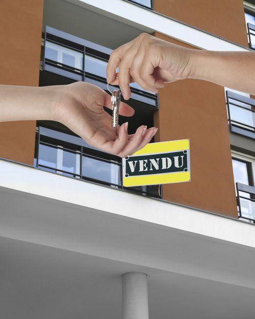 apartment sale renter