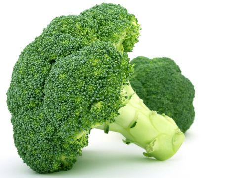 appetite broccoli brocoli broccolli