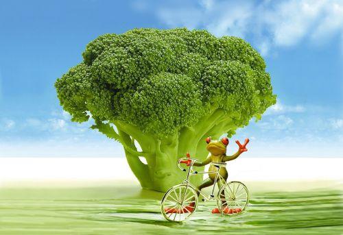 appetite broccoli frog