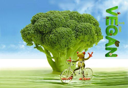 vegan appetite broccoli