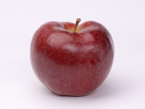 apple fruit nutrition