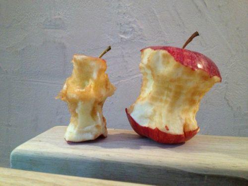 apple chewed on eaten