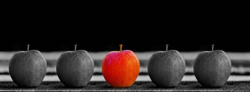 apple fruit selection