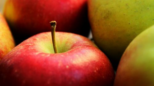 apple red fruit
