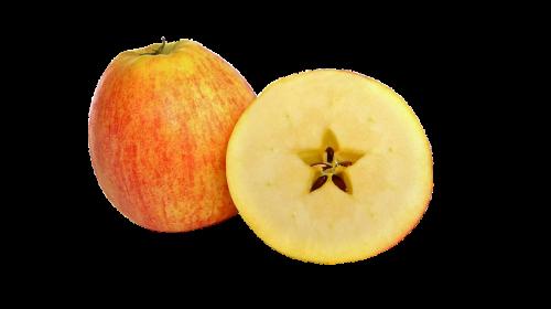 apple fruit pome fruit