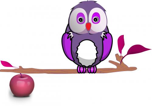 apple fruit branch