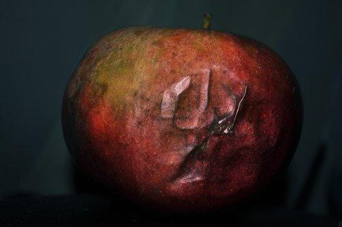 apple  rot  damaged