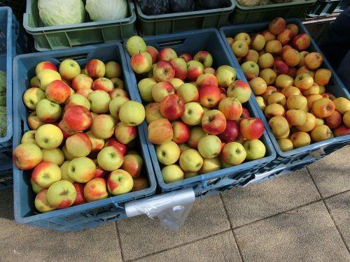 apple crates market