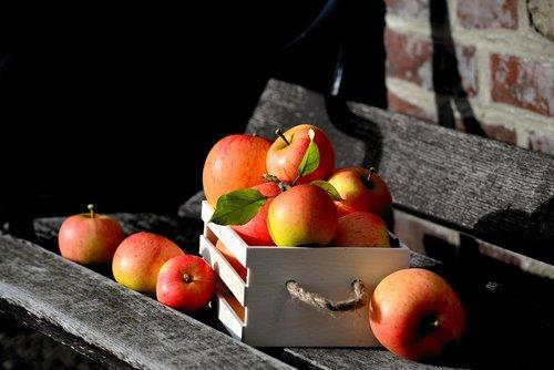 apple  goldparmäne  box