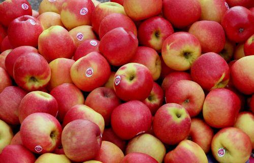 apple apple crate farmers local market