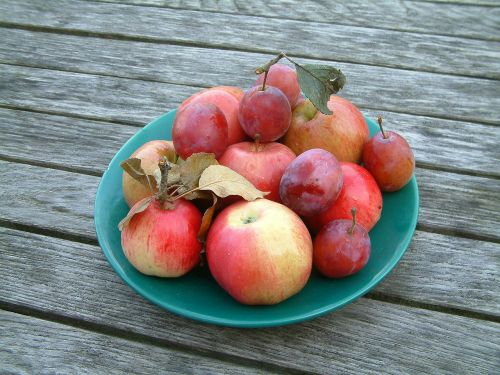 apple plums fruit