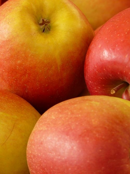 apple red healthy