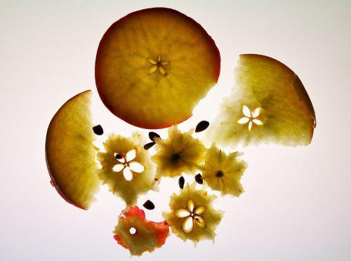 Apple Slices Eaten