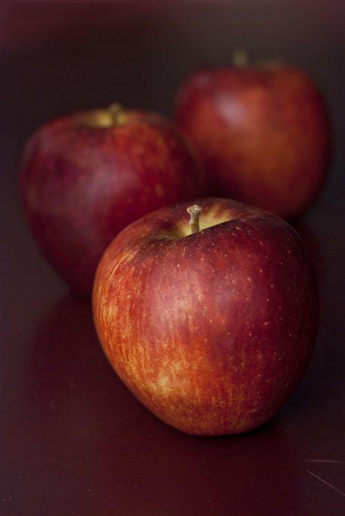 apples fall close-up