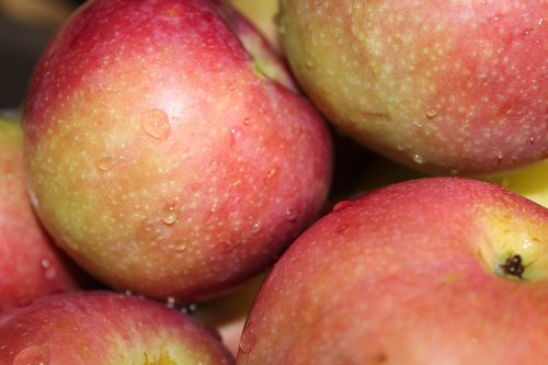 apples  apple  produce