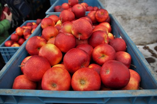 apples  red  sale