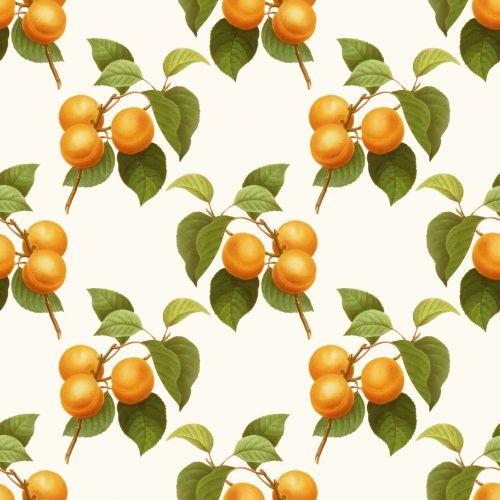 Apricot Fruit Vintage Illustration