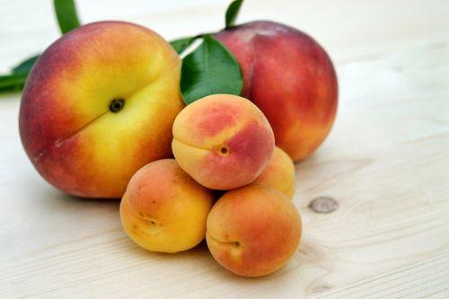 apricots sugar apricots peach