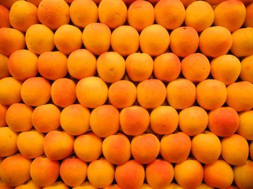 apricots fruits market