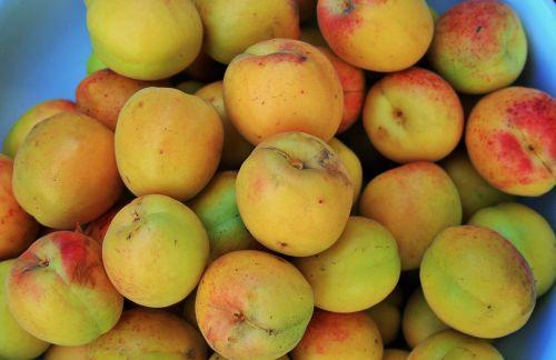 Apricots Close
