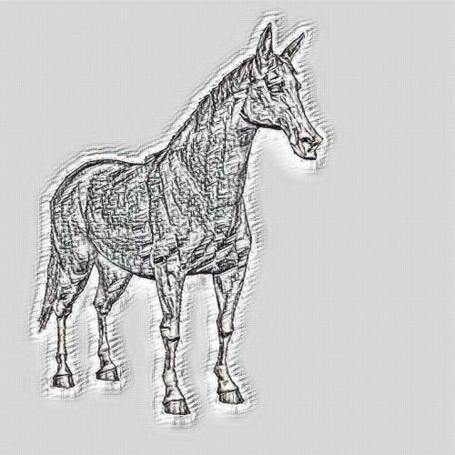 arabų, arklys, rašiklis, piešimas, eskizas, pilka, gyvūnas, vidaus, naminis gyvūnėlis, žinduolis, stovintis, arabiškas arklys