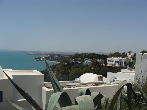 arabic houses blue