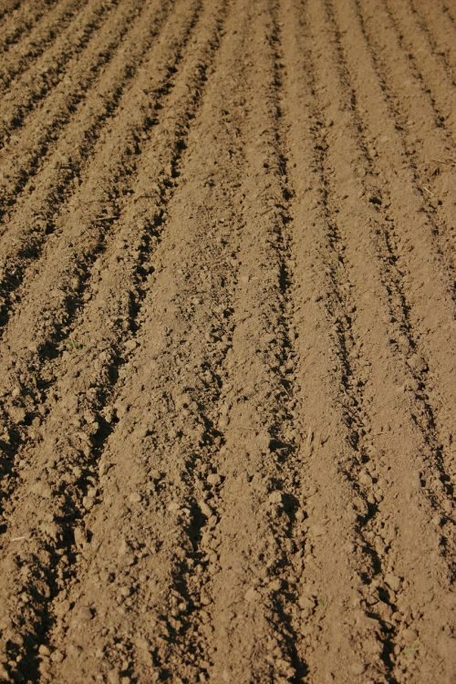 arable furrow farmland rut