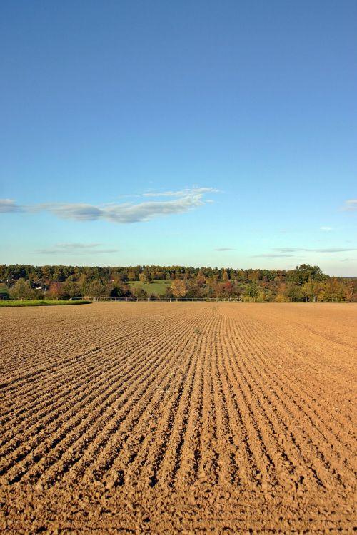 arable ackerfurchen ridge