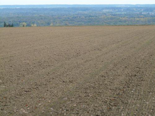arable land floor