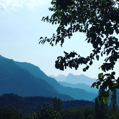 aragonese pyrenees mountains tree