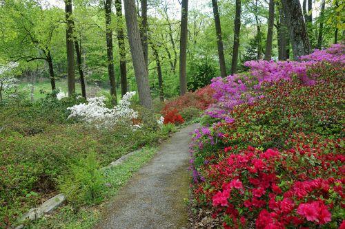 arboretum devon pennsylvania