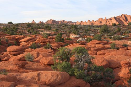 arches national park rocks desert