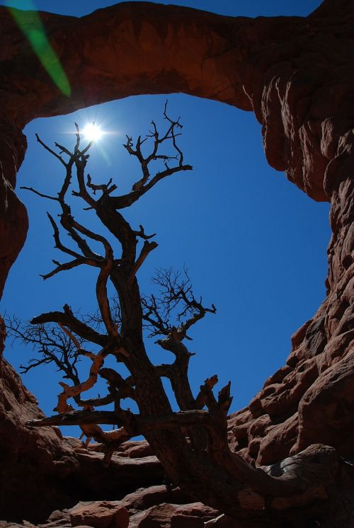 arches national park nature outdoors