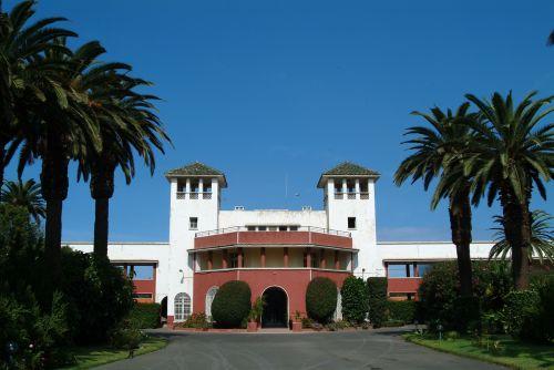 architect back to school palm