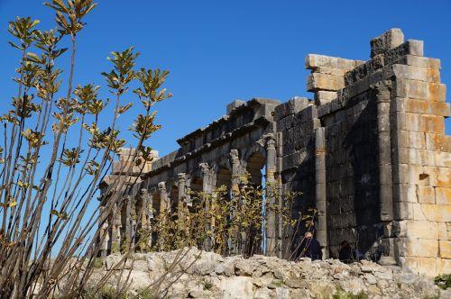 ruins volubilis architecture