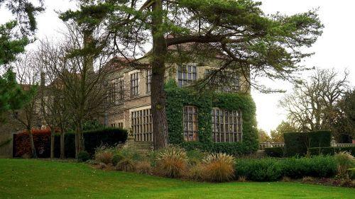 architektūra,pastatas,žolė,medis,langai