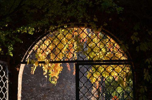 archway autumn input